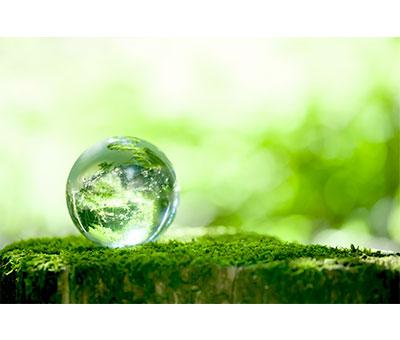 地・人・場など、すべての「気」を浄化